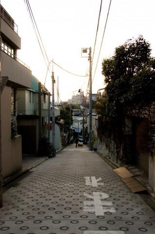 住宅街-借金脱出生活日記